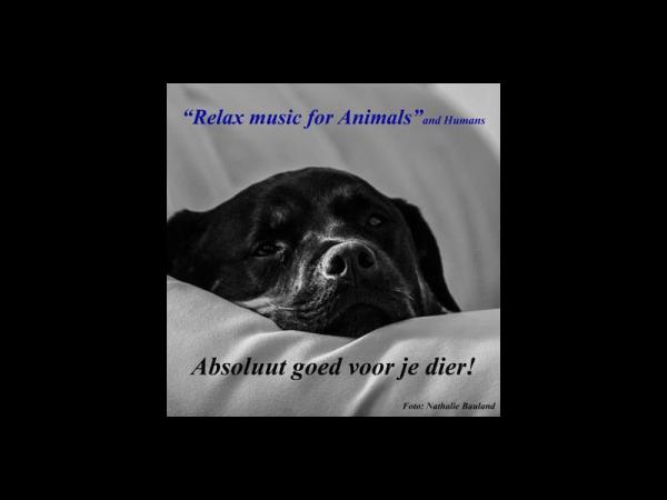 Relax music for animals - cd voor uw huisdier