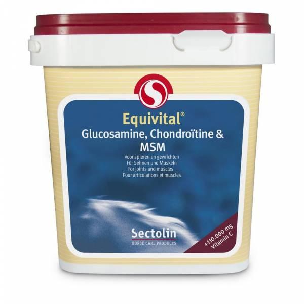 Equivital Glucosamine Chondroïtine MSM Sectolin Paard 1 kg