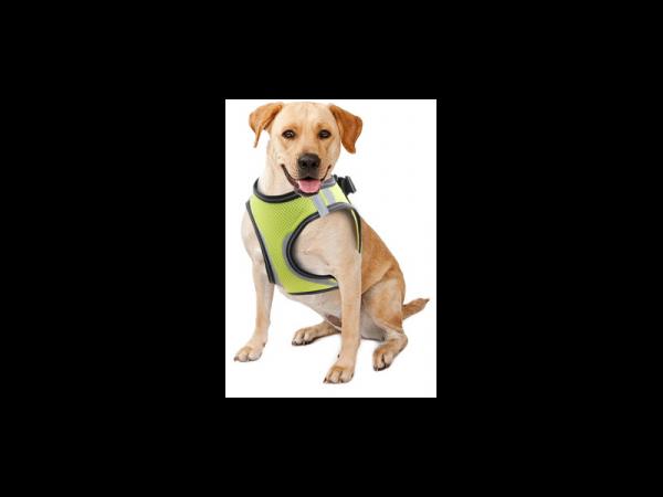 Doggy Safety Harness Veiligheidsvest Hond