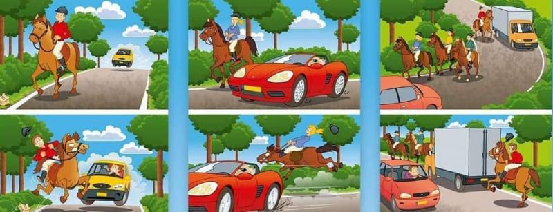 Weet-wat-je-paard-doet-als-je-een-paard-ontmoet