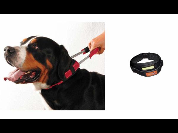 Premium Collar Halsband Korte Lijn Hond X-Large 1 stuk
