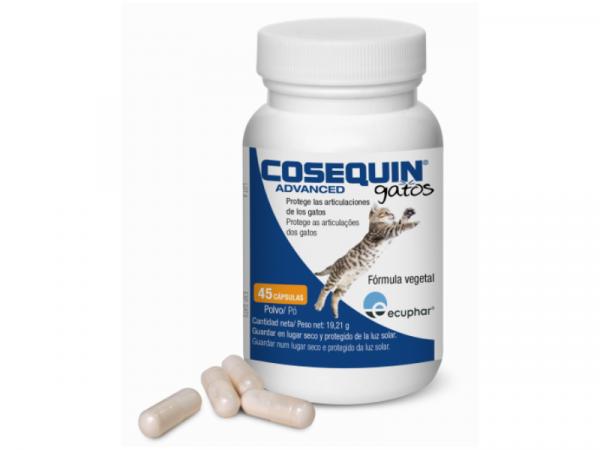 Cosequin Kat 45 capsules