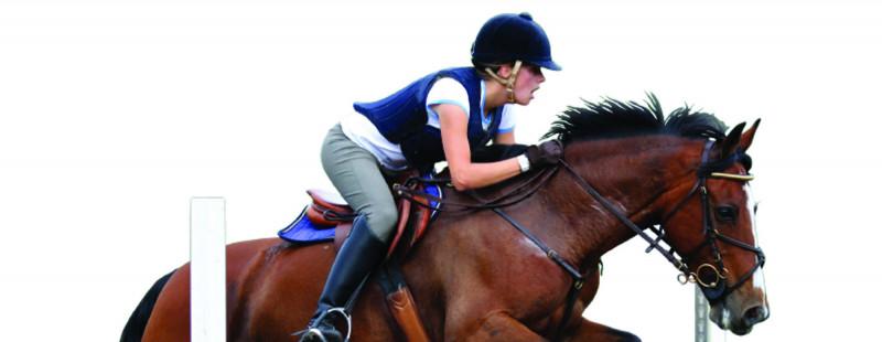 Equihorst-paard-supplementen