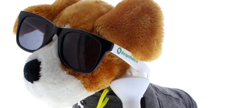 Zonbescherming-hond
