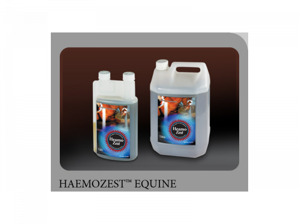 Haemo-Zest Paard