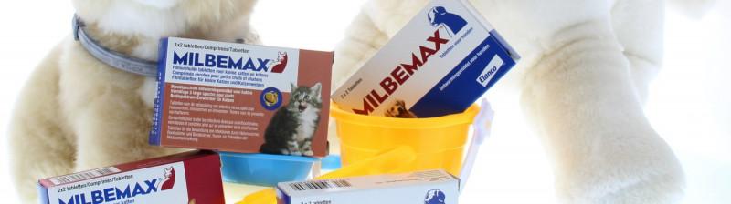 Milbemax-zomer-actie-hond-kat