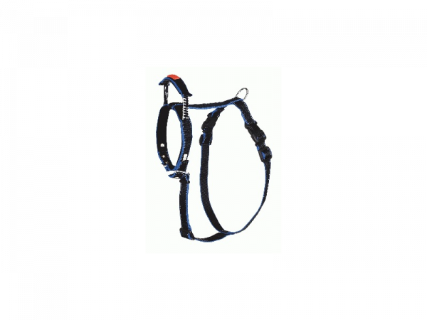Harness Interated Long Leash Hond