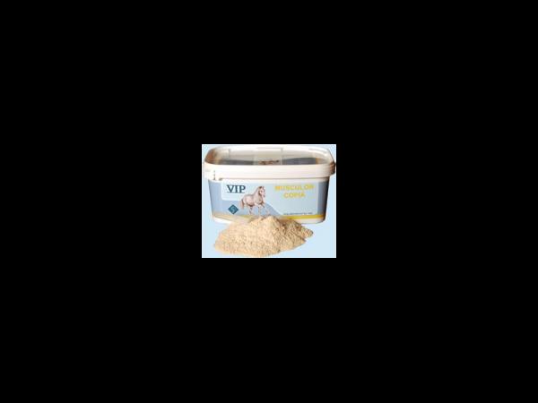 VIP Musculor Copia 1200 gram