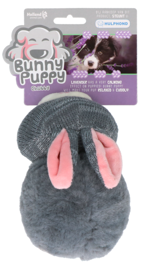 Bunny Puppy Chubby