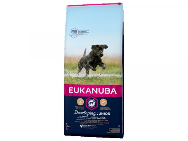 Eukanuba Developing Junior Large Breed